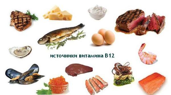 фото, на котором показаны источники витамина B12