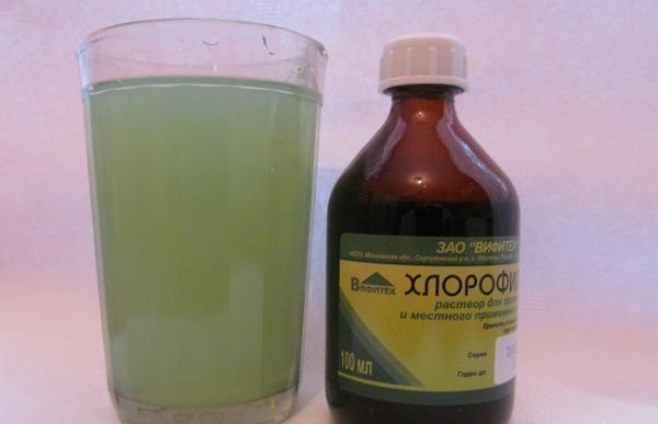раствор хлорофиллипта для десен