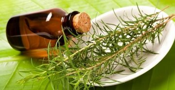 масло чайного дерева для отбеливания зубов, вред и польза