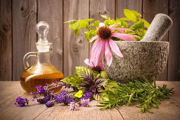 травы при лечении пародонтоза у взрослых