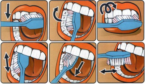 Как правильно ухаживать за зубами взрослых