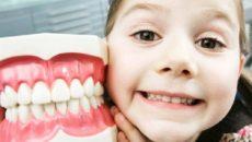 Можно ли беременным и на каком сроке лечить зубы с анестезией